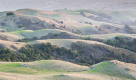 California Rolling Hills and Silicon Valley Background stock images