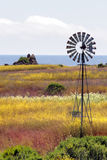 California's Central Coast, Big Sur, USA Stock Photography