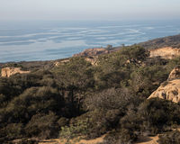 California's Torrey Pines State Natural Reserve Stock Image