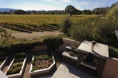 california Santa dolinny wytwórnia win ynez zdjęcia royalty free