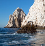 "California Sea Lion resting on ""the Point"" or ""Pinnacle of Lands End"" of Los Arcos in Cabo San Lucas in Baja Mexico Stock Photo"