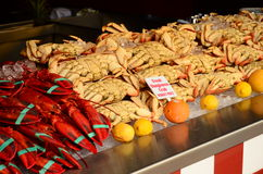 California Seafood Royalty Free Stock Images