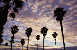 California Skies Sunset Royalty Free Stock Images