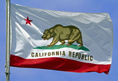 California State Flag. The California State Flag flying in the wind royalty free stock photo
