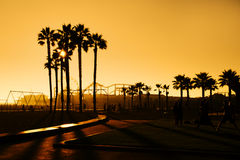 California Sunset. Palm trees silhouetted against an orange sky on Santa Monica Beach, California USA stock images