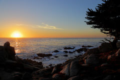 California sunset. Sunset at 17-mile drive, pebble beach California Royalty Free Stock Images