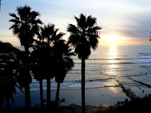A California Sunset Over the Pacific Ocean. The silhouette of palm trees against a bright sunset over the Pacific Ocean in Encinitas, California royalty free stock images