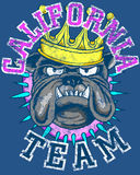 California team logo. Graphic with text California team with logo of bulldog wearing a spiked collar and gold crown on blue background Royalty Free Stock Image
