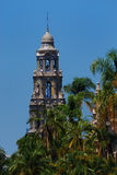 California Tower with Palms. San Diego's California Tower in Balboa Park royalty free stock photos
