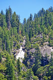 California, United States of America, Usa, Yosemite Park, nature reserve, green, landscape, mountain, waterfall, fall. A waterfall and giant sequoia groves in stock images