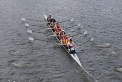 California University races in the Head of Charles Regatta Royalty Free Stock Image