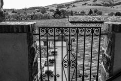 California Vineyard Black and White Stock Photography