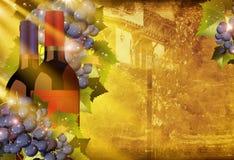 California Vineyards Stock Photography