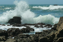 California wave. Wave crashing on northern California rocks Stock Photo