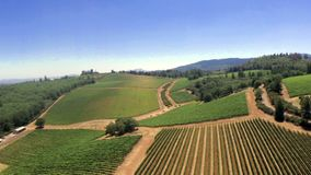 California Wine Country Composition stock footage