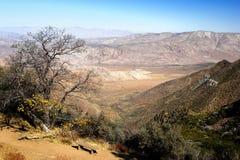 Californian desert Royalty Free Stock Photos