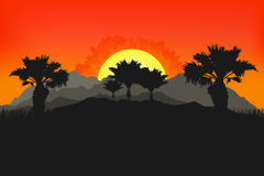 Californian landscape with palms and sun. Sunset on background. Mountains, tropic palms for wallpaper Royalty Free Stock Photo