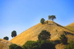 Californian prairie. It's a photo of the Californian prairie Royalty Free Stock Photography