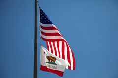 Californian and US Flags. The Californian and American flags waving in the wind, before a blue sky royalty free stock photos