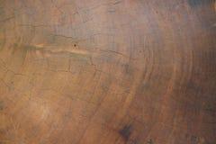 Californische sequoia gezaagd eind Royalty-vrije Stock Foto's