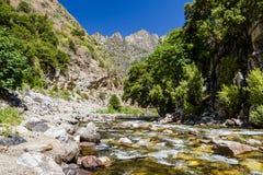 Californische sequoiakreek, Weg 180, het Nationale Park van de Koningencanion, Californ Royalty-vrije Stock Afbeelding