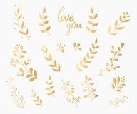 Caligrafía adornada de la tinta del oro de la decoración del Flourish Fotos de archivo