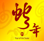 Caligrafía china 2013 Fotos de archivo libres de regalías