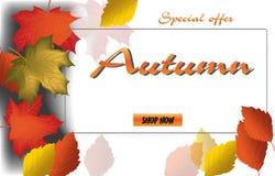 Caligrafía del otoño Letras estacionales Plantilla de la bandera del web Ilustración del vector Imágenes de archivo libres de regalías