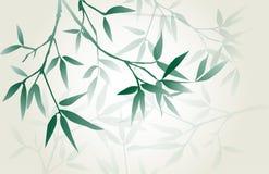 Caligrafía japonesa - bambú Foto de archivo libre de regalías