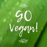 A caligrafia vai vegetariano Sinal tirado mão do vetor Elementos para o projeto Citações inspiradores Foto de Stock Royalty Free