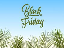 Caligraphic text black Friday on a blue background. Beautiful calligraphic inscription decorated with a pattern of palm leaves on a blue background Royalty Free Stock Photo