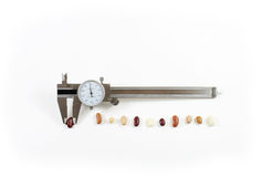 Caliper with beans in a line. Trying to measure up, isolated on white royalty free stock photography