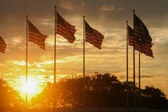 The call of my country. Sunset in the park, beautiful flags in the park of new jersey, the beautiful landscape adorned with clouds, sun and many flags cute stock photo