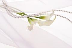 Calla. And pearl on soft chiffon cloth Stock Photo
