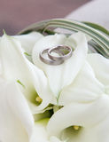 Calla flowers with wedding rings Royalty Free Stock Photo