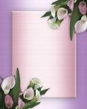 Calla-Lilien-Rand auf rosafarbenem Satin Stockfoto