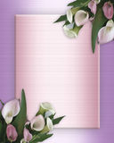 Calla Lilies Border on pink satin