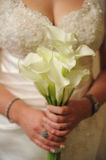 Calla lilies bouquet in bride`s hands. Bride ready with a simple calla lilies flower arrangement held in front of herself with both hands. Blurred image of a Royalty Free Stock Photo