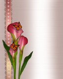 Calla lilies and butterflies. Image and illustration composition of beautiful pink calla lily flowers and monarch butterflies for greeting card, wedding Royalty Free Stock Photos