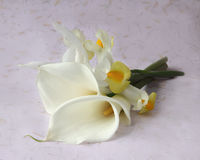 Calla lilies with iris Royalty Free Stock Photography
