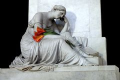 Calla Lilies and Marble Sculpture royalty free stock image
