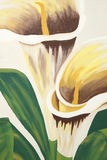 Calla Lilies Painting Stock Photography