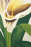 Calla Lilies Painting Royalty Free Stock Photos