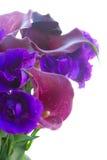 Calla lilly και λουλούδια eustoma Στοκ φωτογραφία με δικαίωμα ελεύθερης χρήσης