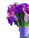 Calla lilly och eustomablommor Royaltyfri Bild