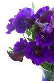 Calla lilly och eustomablommor Arkivfoton