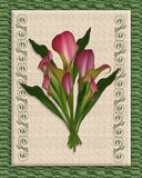 Calla Lily Bouquet on canvas. Image and illustration composition of pink calla lilies on canvas, background, wedding, birthday, party invitation Stock Photography