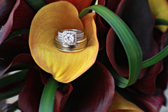 Calla Lily Diamond. Diamond wedding rings in a calla lily bouquet Royalty Free Stock Photo