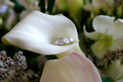Calla Lily and Engagement Ring. Detail of a calla lily delicately holding a diamon engagement ring Royalty Free Stock Photos