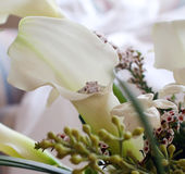 Calla Lily and Engagement Ring Royalty Free Stock Images